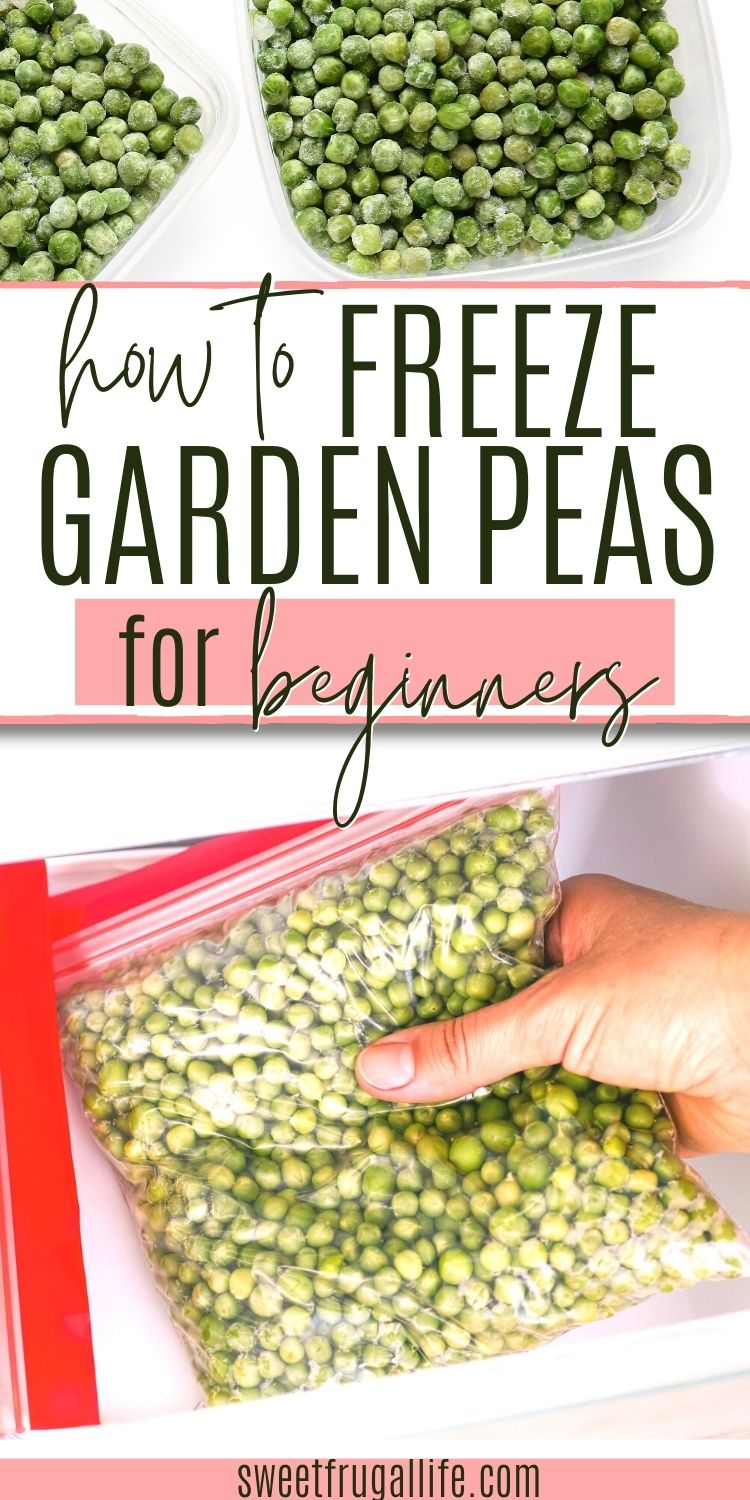 how to freeze fresh peas - how long to blanche peas