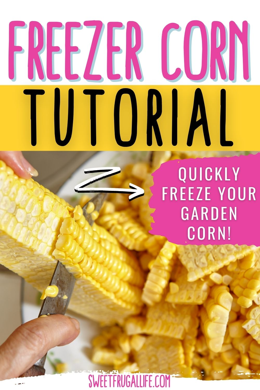 freezer garden corn - how to preserve corn from garden