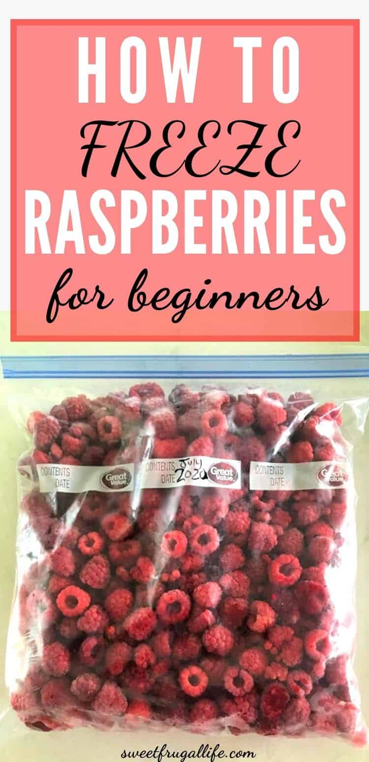 how to freeze raspberries for beginners
